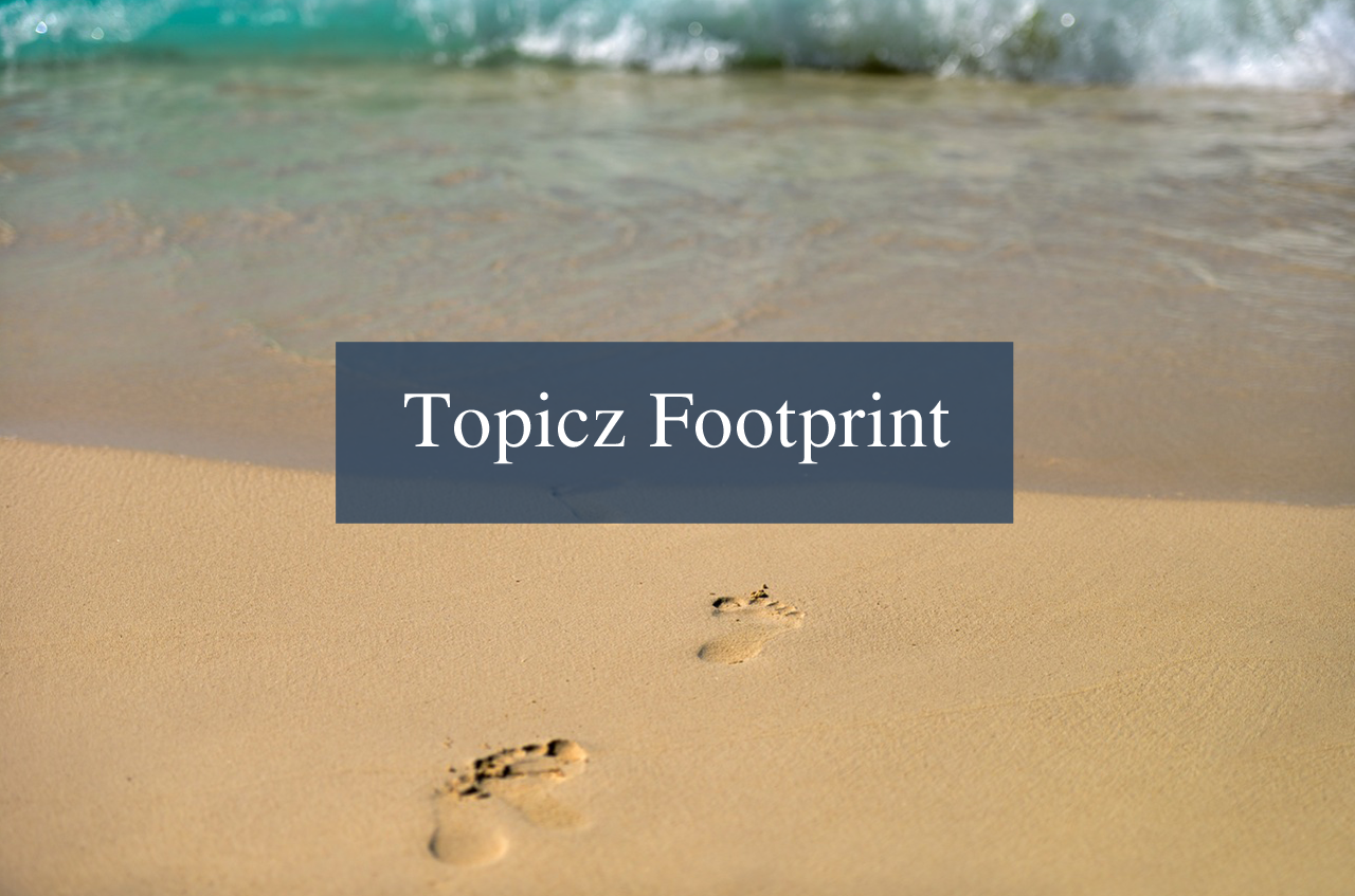 Topicz Footprint